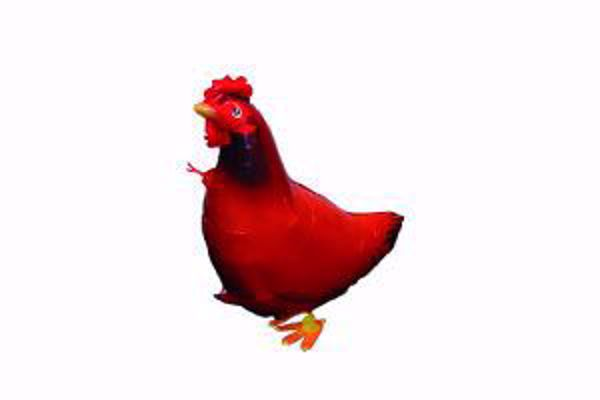 Picture of Airwalker Huhn