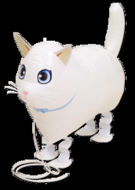 Bild von Airwalker Katze weiß